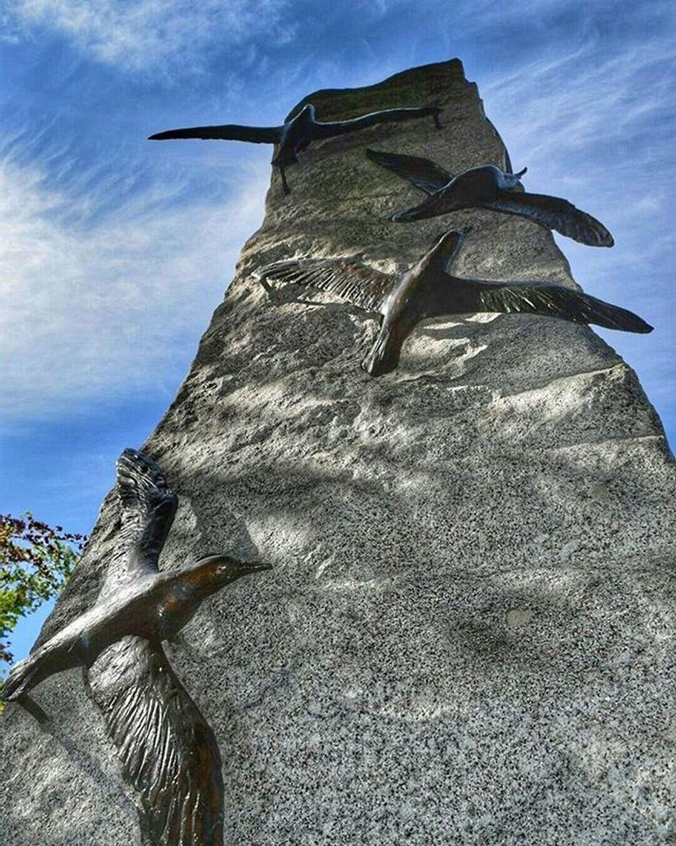 Metalart Sculptures Hobart Tasmania Hobartart Ighobart Iglobal_photographers Birds
