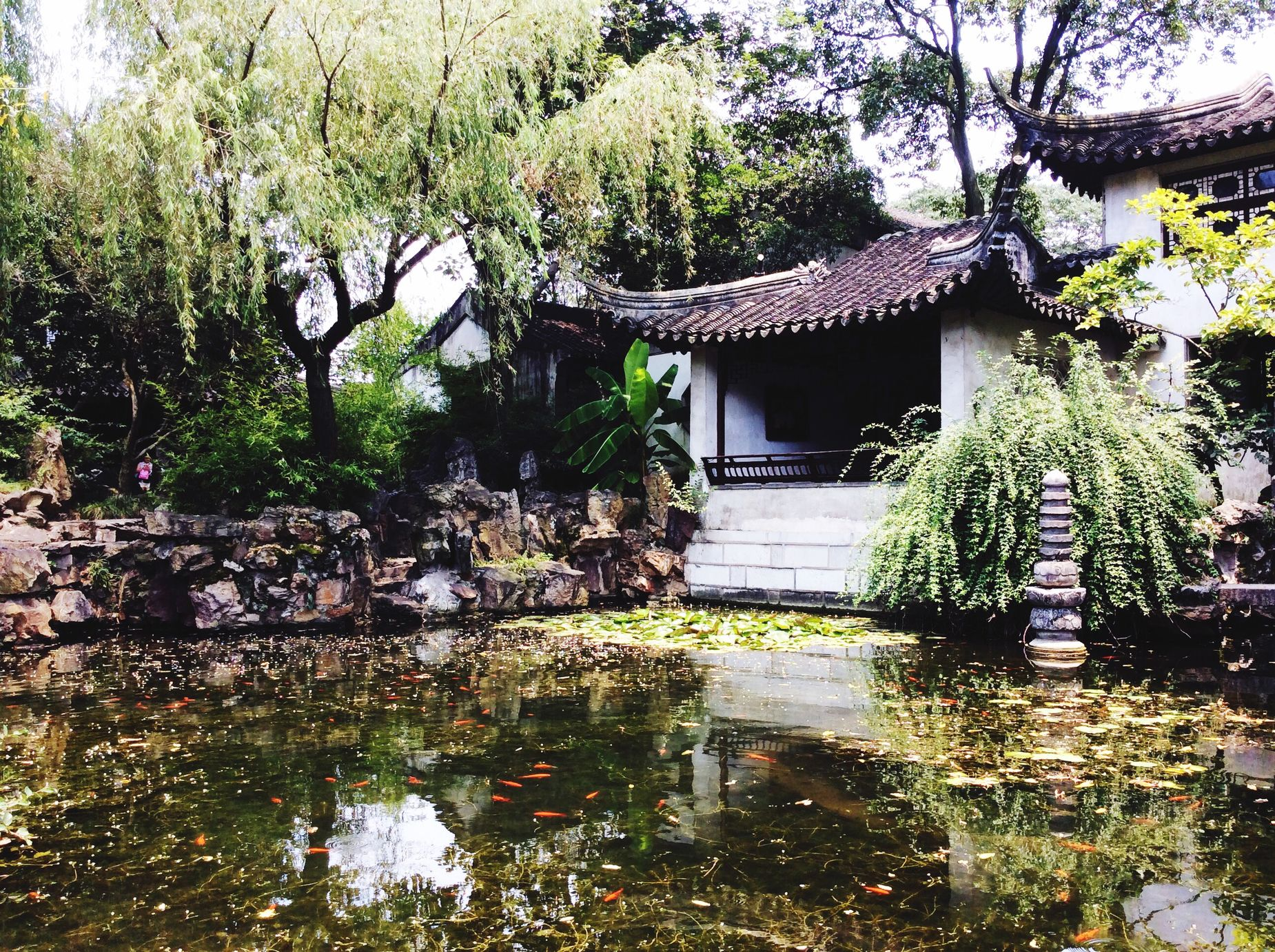 Travelling Walking Around Alone Time Water Sightseeing Nature Chinese Classic Garden 留园一角