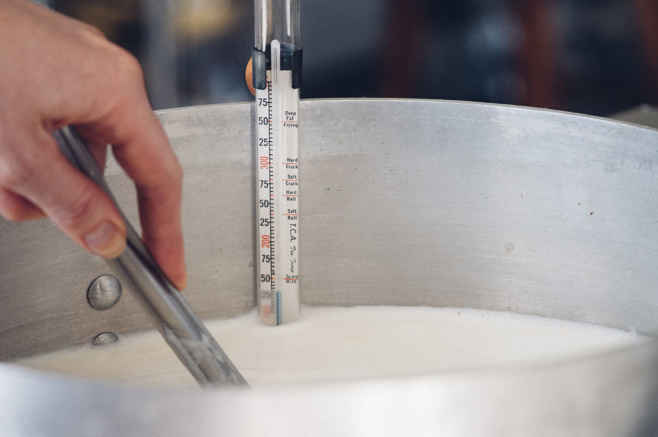 Cheese Cheesemaking Close-up Day Factory Holding Human Body Part Human Hand Indoors  Milk Occupation One Person People Pot Real People Stirring Temperature Thermometer