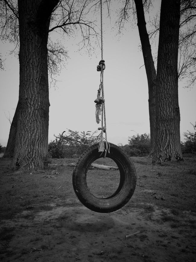 Stillness In Time StillLifePhotography Playground AMPt - My Perspective Tireswing Shootermag Telling Stories Differently