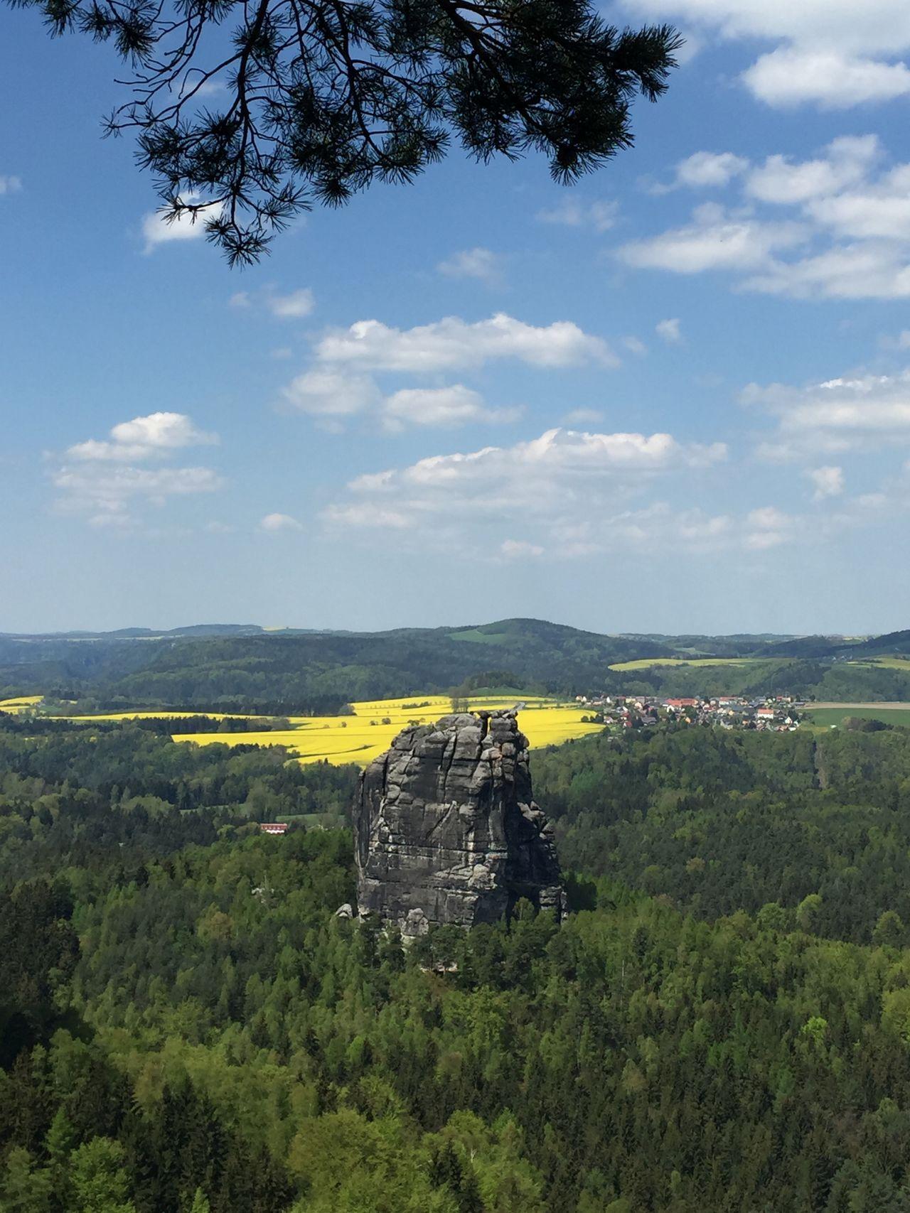 Affenfels Beauty In Nature Forrest Germany Landscape Landscape_Collection Nationalpark Nationalparks Nature Nature Outdoors Sachsen Scenics Schrammsteine Sky Summer Sächsische Schweiz Sächsischeschweiz Tranquil Scene Tree Wald
