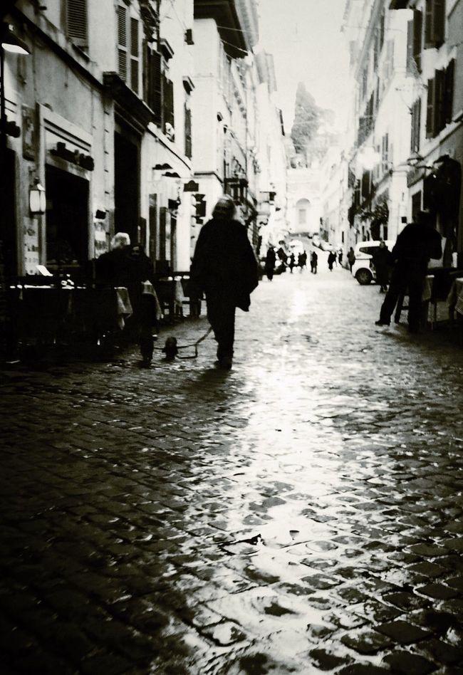 Black And White Rome