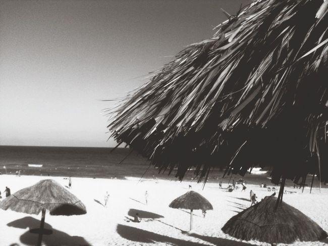 Capa Filter Playa Delfines  Cancun On The Beach