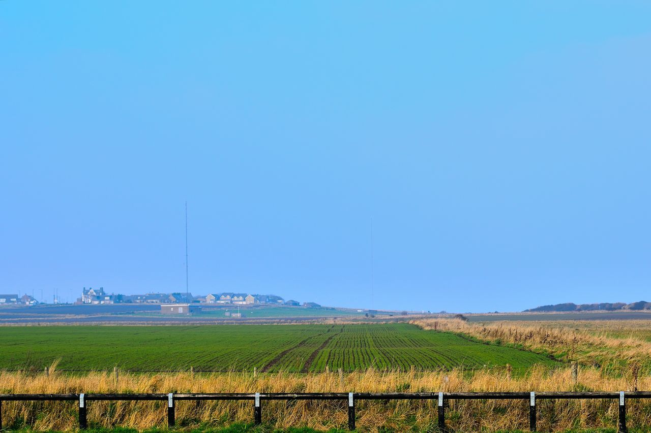 Agriculture Beauty In Nature Blue Clear Sky Day England Farm Field Growth Inghilterra Nature Nikon Nikond3300 Outdoors Photo Photographer Photography Photooftheday Rural Scene Scenic Sea Sea And Sky Sea Life Sea View Seaside
