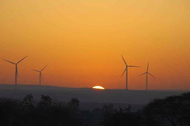 Environmental Conservation Alternative Energy Sunset Wind Turbine Wind Power Renewable Energy Fuel And Power Generation Windmill Nature Social Issues Rural Scene Orange Color Electricity  Silhouette Sustainable Resources No People Environment Beauty In Nature Tree Landscape