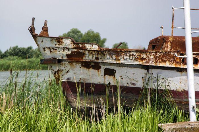 Danube DanubeDelta Sulina WreckedShip Abandoned Damaged Danube România Danube Delta ,romania Danube River Day Grass Nautical Theme Nautical Vessel No People Outdoors Rusty Sky Wrecked Wrecked Boat.