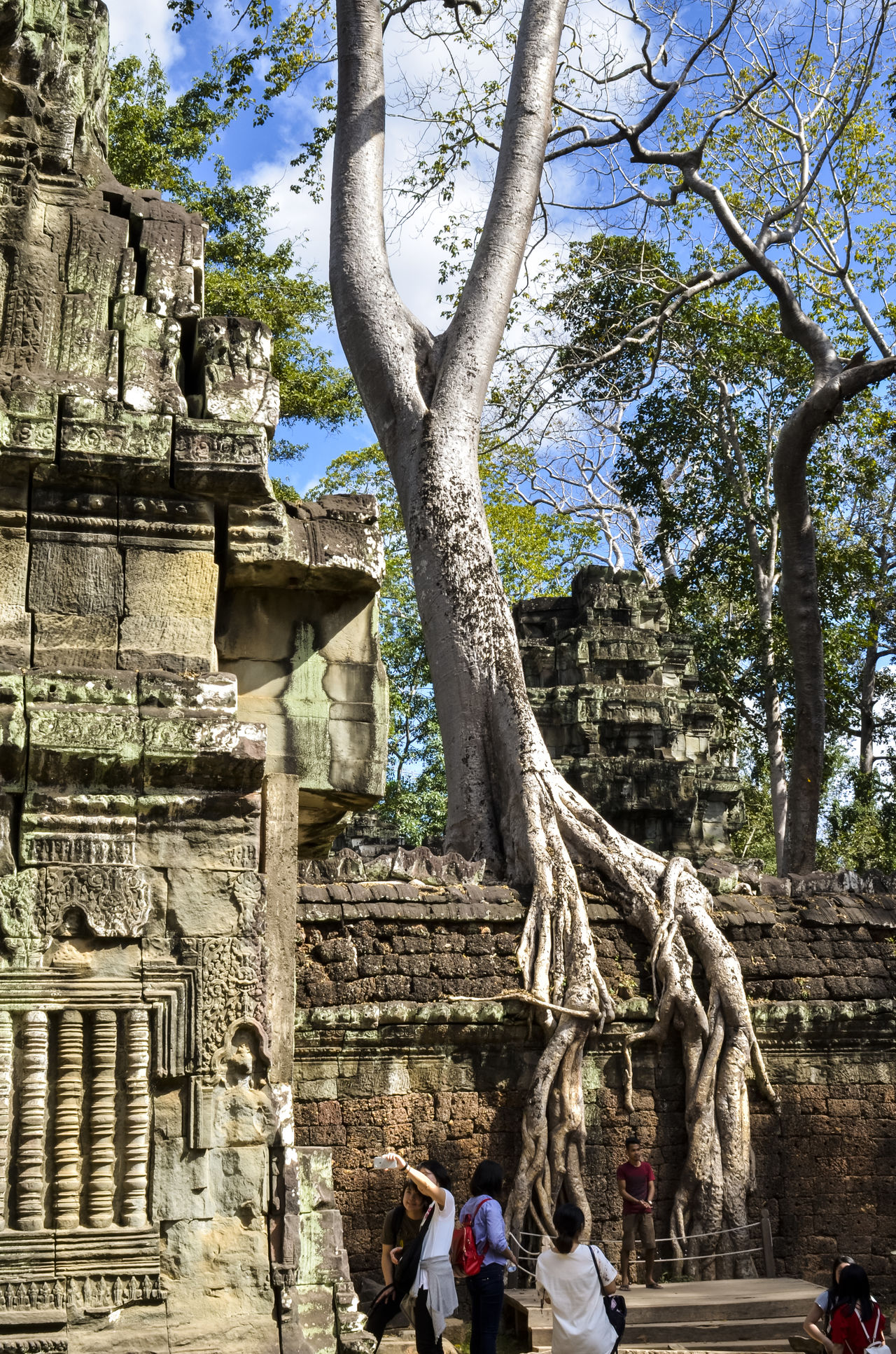 Ancient Angkor Angkor Thom Angkor Wat Cambodia Castle Character Day Siem Reap Stone Statues Travel Destinations Travel Photography Tree