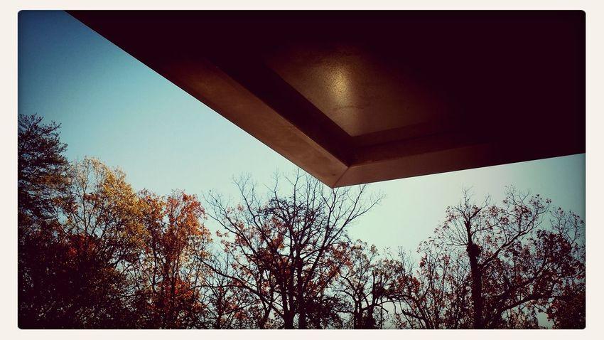 Sunny November day...