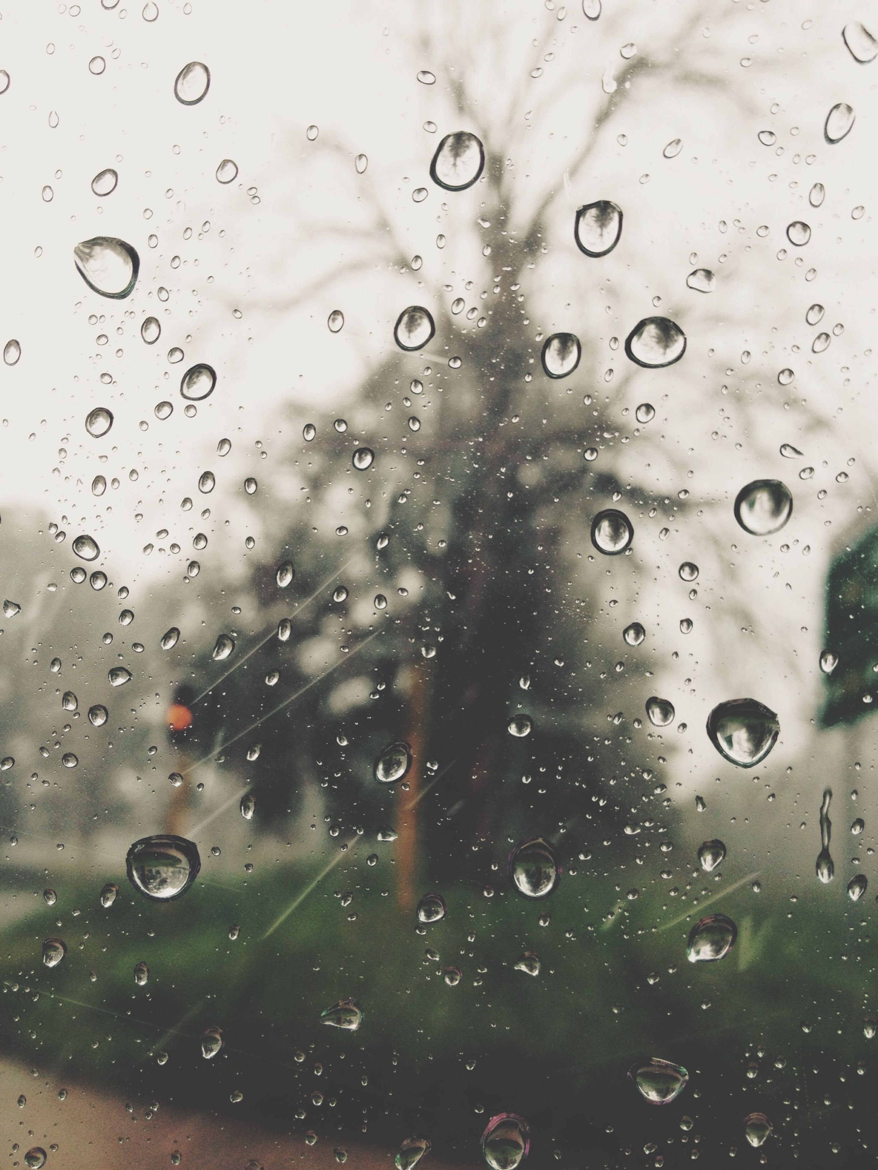 drop, wet, window, water, rain, transparent, glass - material, raindrop, indoors, weather, focus on foreground, season, backgrounds, full frame, water drop, glass, car, close-up, droplet, sky