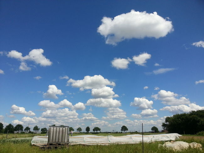 Solawi Csa Sky And Clouds Outdoors