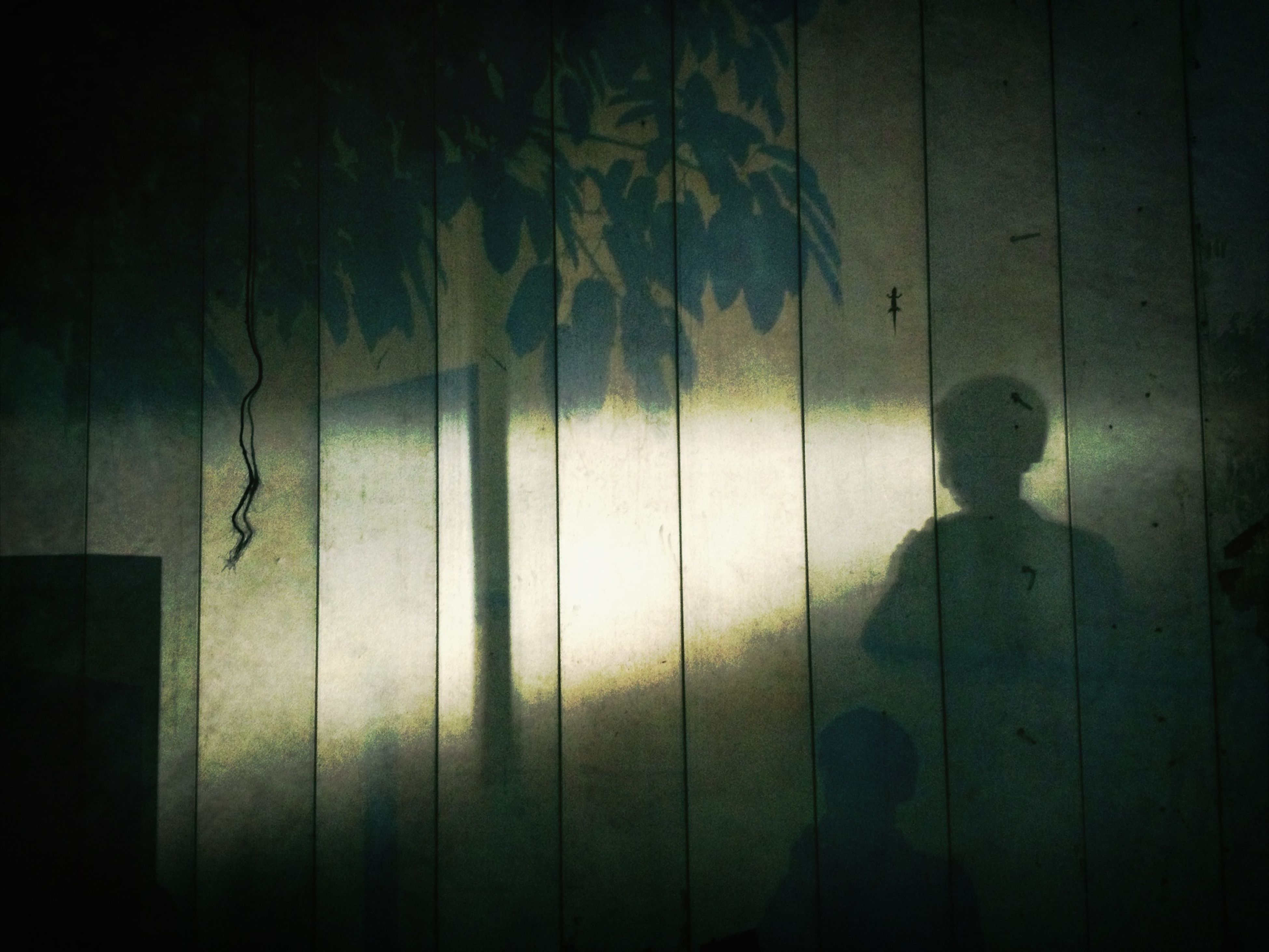silhouette, shadow, wall - building feature, night, indoors, built structure, focus on shadow, dark, wall, sunlight, architecture, door, outline, standing, closed, wood - material