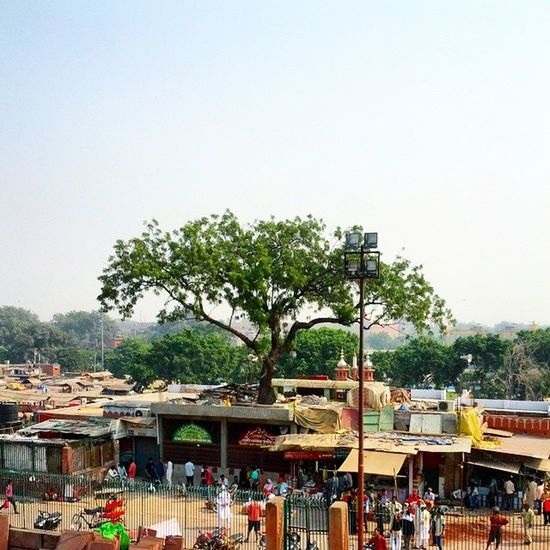 Grave of Sarmad and Hare Bhare sahab Sufi Delhi
