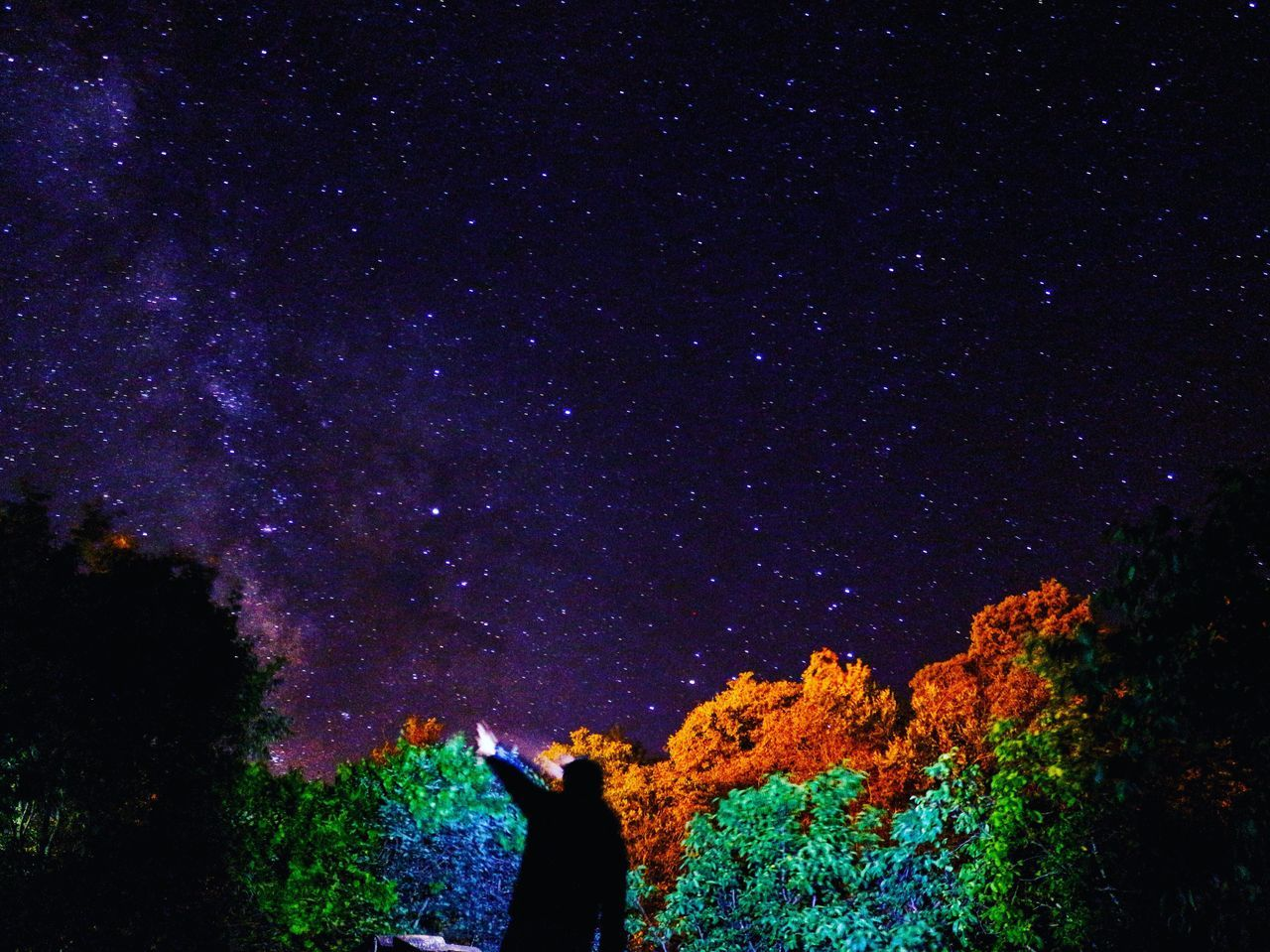 EyeEm Selects EyeEmNewHere Night Nature Real People Star - Space Beauty In Nature Outdoors Astronomy Tree Scenics Low Angle View Silhouette Star Field Sky Lifestyles Starry One Person Galaxy People Neon Life