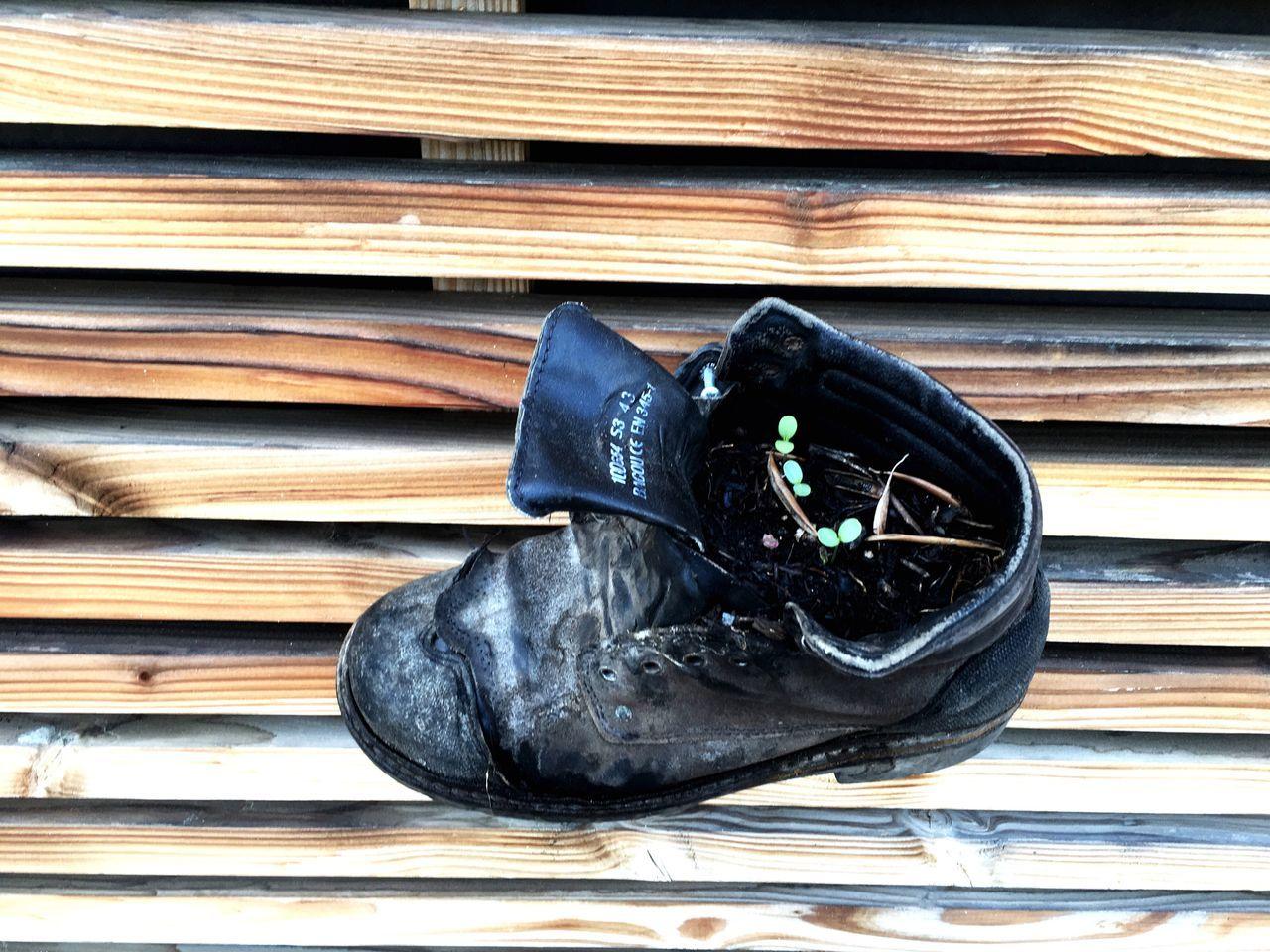 Shoes plant.