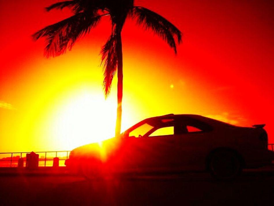 Capture The Moment Nissan Nismo  Sunrise Silhouette Enjoying The Sun Sunrise_sunsets_aroundworld My First Car Miamivice EyeEm Gallery Nofilter#noedit Miamiphotographer #miamiflorida #miamifashion #miaminights #miamiliving #miamistyle #miamibound #miamibeach #miamilife #brickell #wynwood #coralgables #sobe #igersmiami #ilovemiami #illgrammers #ig_masterpiece #incredible_shot #supremeshooters #photoofthe
