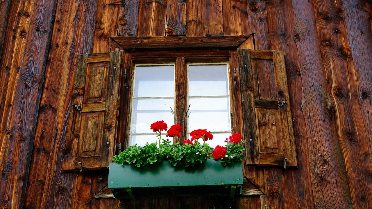 Flowers Holzhaus Pattern Weathered Weathered Wood Window Wood - Material Wooden