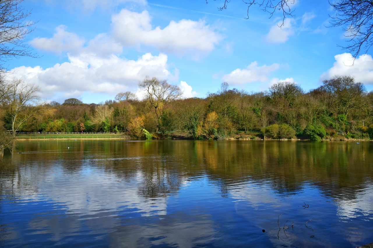 Reflection Tree Water Nature Sky Lake Beauty In Nature No People Scenics Reflection Lake Swimming Landscape Cloud - Sky Flower Outdoors Day Nikonphotography Nikon Tranquility Forestwalk Hampstead Heath D5300