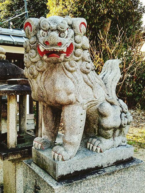 京都某神社的石獅