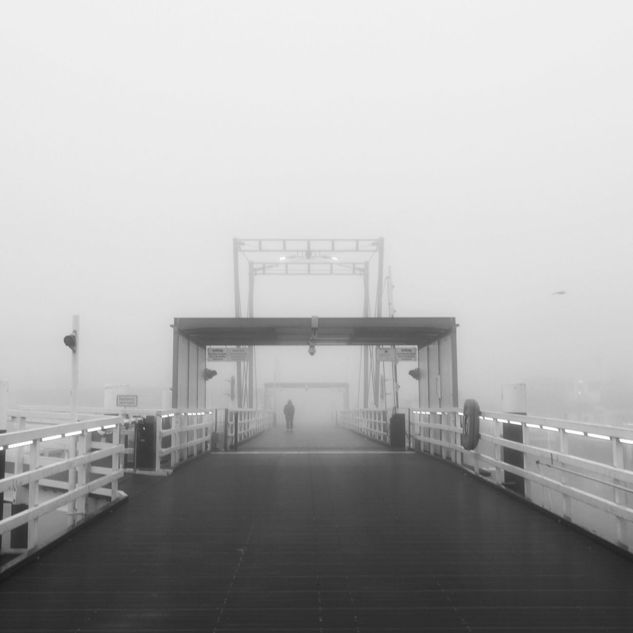 Ein typisch Herbstmorgen in Kiel Foggy Morning Nature Beautiful Nature_collection Black And White Collection  Streetphotography Eyem Best Shots Awesome_shots Bestoftheday Kieler Förde