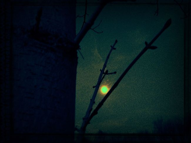 Full Moon Shootermag