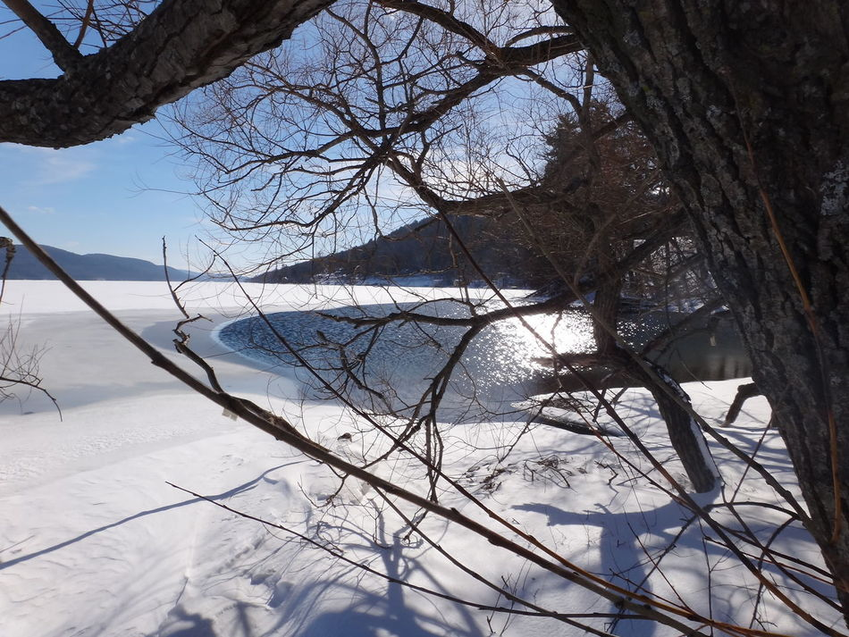 Fresh View. Tree Nature Sky Winter Cold Temperature Beauty In Nature Snow Outdoors No People Day Branch Tranquility Bare Tree Scenics Close-up Water Lakeshore Lakeside Lakefront Lake Shore Lakescape Lake Ice Otsego Lake Cooperstown New York