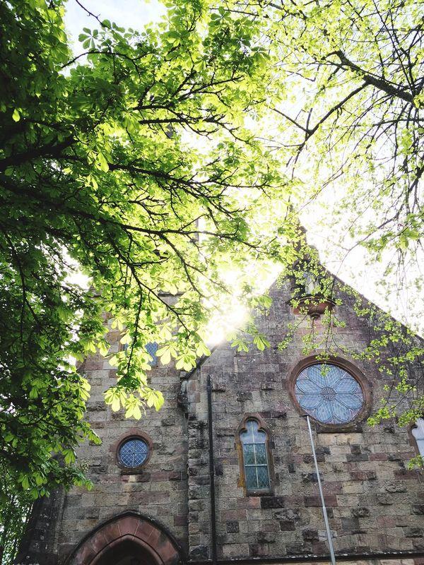 Evangelische Kirche Tennenbronn Tennenbronn Church Evangelische Kirche Schwarzwald MAI Green Green Leaves Architecture