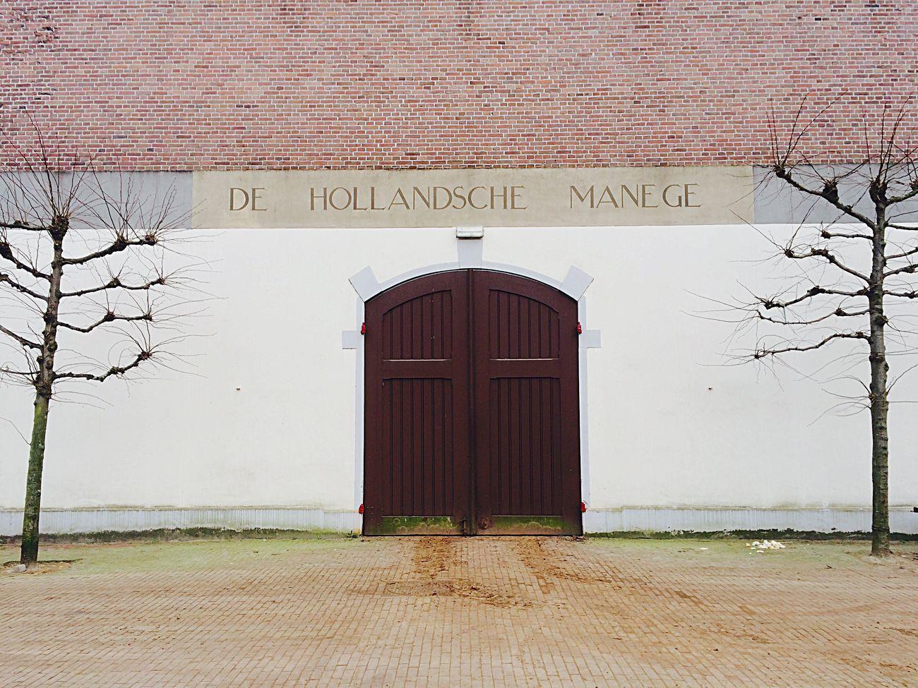 De Hollandsche Manege Horsehotel Manège  Overtoomse Veld Horselife