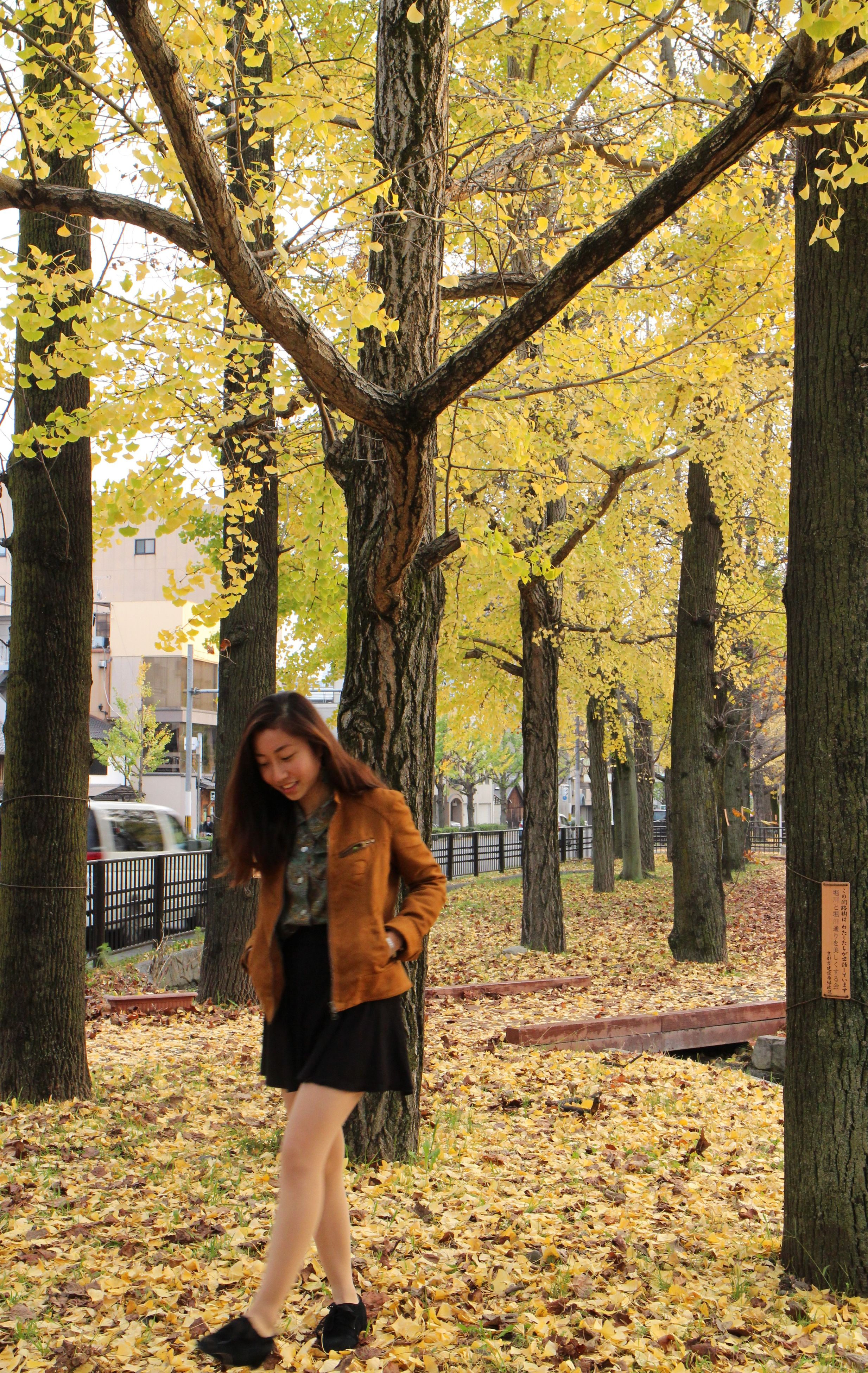 tree, lifestyles, leisure activity, standing, casual clothing, full length, tree trunk, young adult, autumn, young women, growth, person, three quarter length, park - man made space, rear view, leaf, nature, long hair