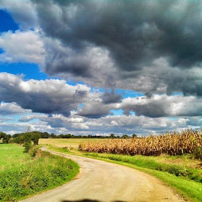 La campagne niortaise #niort bon dimanche ! Niort Rsa_nature Rsa_sky Ig_captures_sky