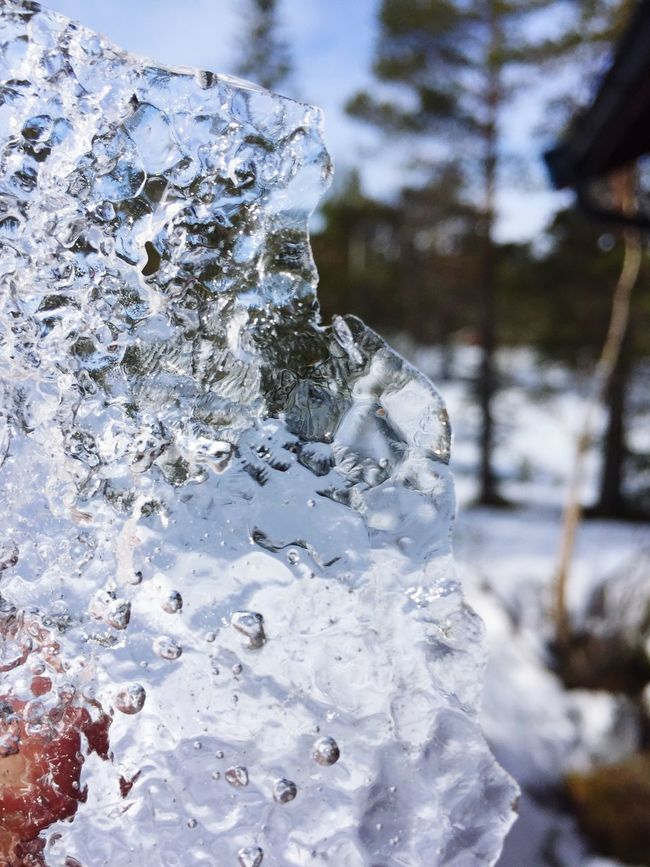 Ice Hanging Out Check This Out Nature Hello World Enjoying Life Nice View Taking Photos Relaxing