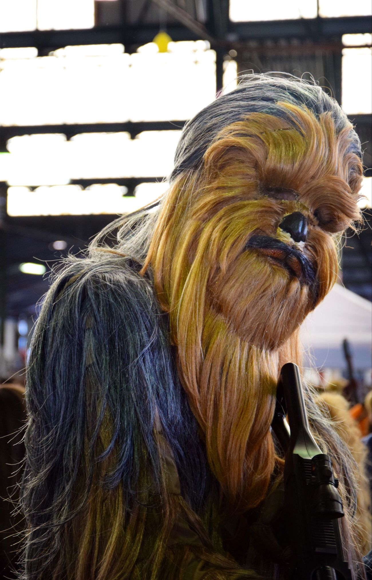 Sandonafumetto Cosplay Cosplayers Cosplaying Starwars Starwarsfigures Chewbacca Guerrestellari
