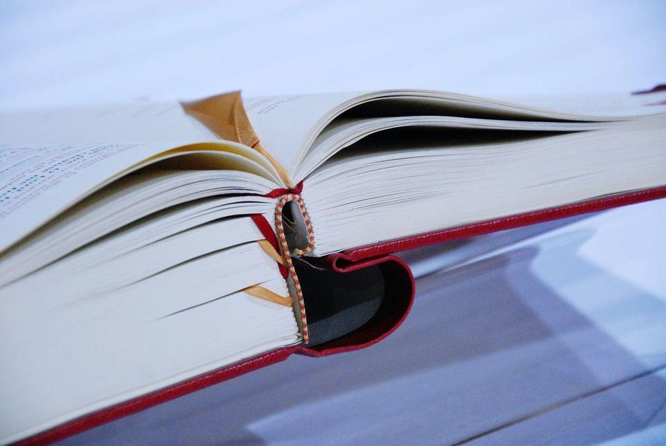 Beautiful stock photos of bible, Bible, Close-Up, Education, Focus On Foreground