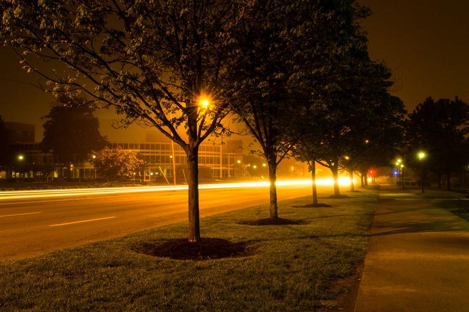 Beautiful stock photos of path, Empty, Illuminated, Light Trail, Long