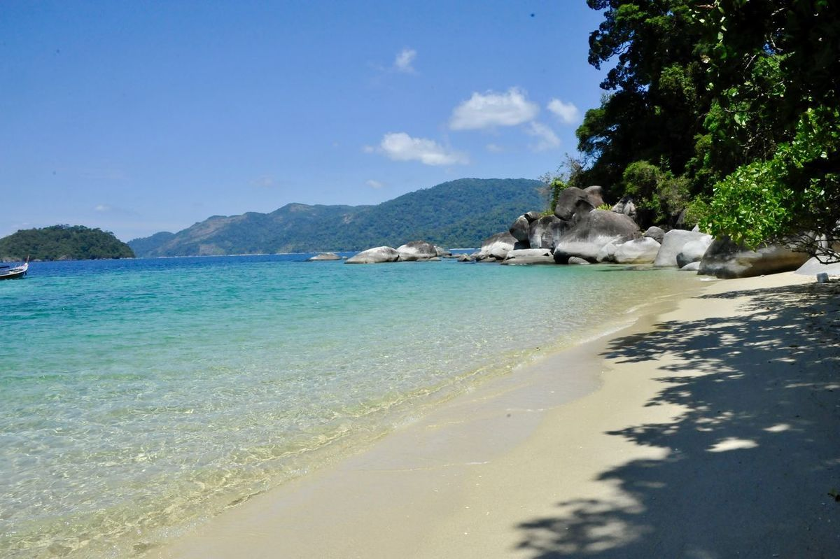 Animal Themes Beach Beauty In Nature Day Domestic Animals Koh Lipe Koh Lipe Thailand Koh Lipe Travel Mammal Nature No People One Animal Outdoors Sea Sky Water