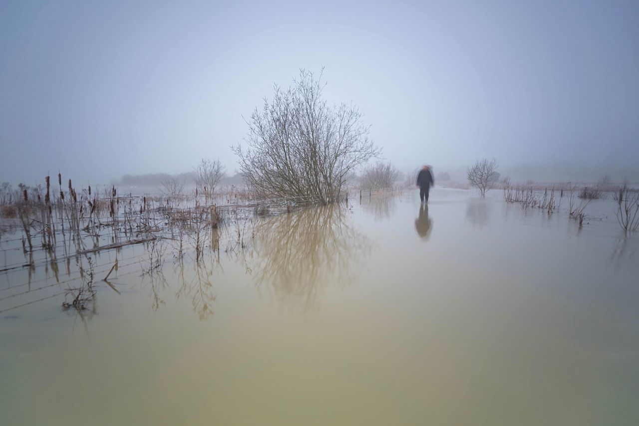 Walk on Water Tree Nature Reflections Water Flood Scenics Outdoors One Person Misty Morning Fog Foggy Tranquil Scene Weather Winter Flooded Beauty In Nature Clear Sky Trees