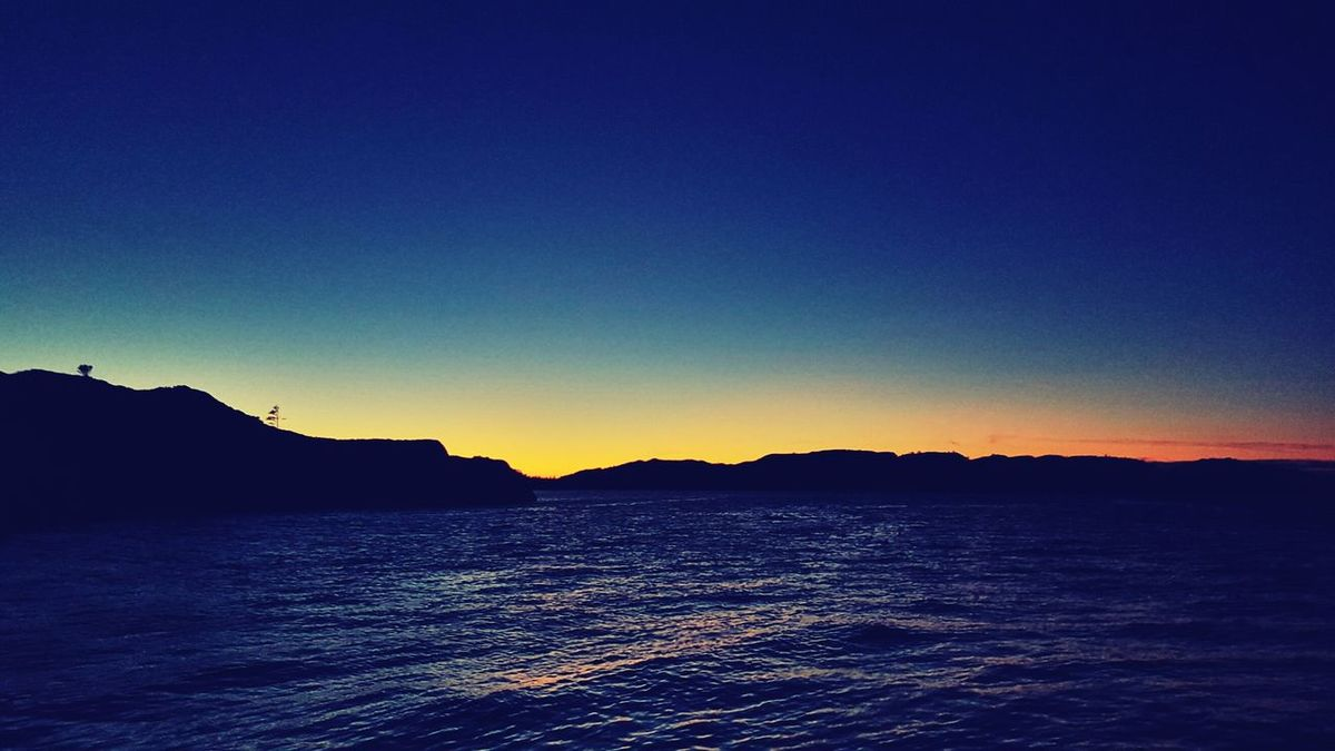 Fish Work Hard Beautiful Sunset Norway