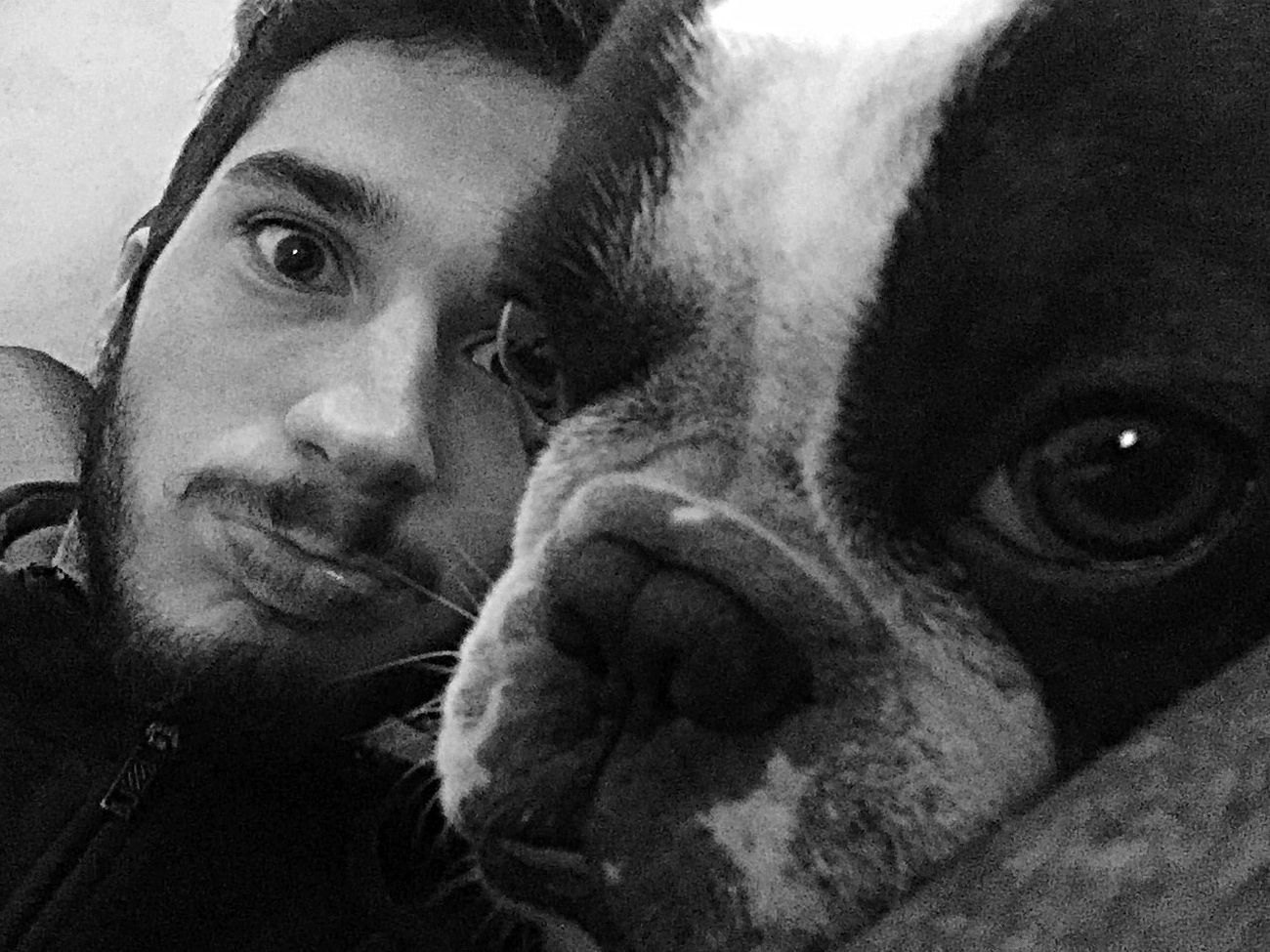 My dogfriend Lincoln ✌🏻️ Dog Bulldog Relaxing Good Times Goodvibes ForTheLoveOfPhotography Instamoment Picoftheday Eyem Gallery Eyemphotos Selfportrait Animals Selfie ✌ Enjoying Life Eyem Best Shots - Black + White Blackandwhite