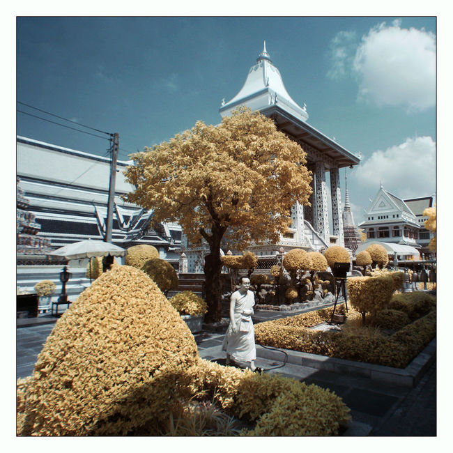 BKK Canon400d Fun Infrared Infrared Photography Landscape Monk  Photoshop Travelling