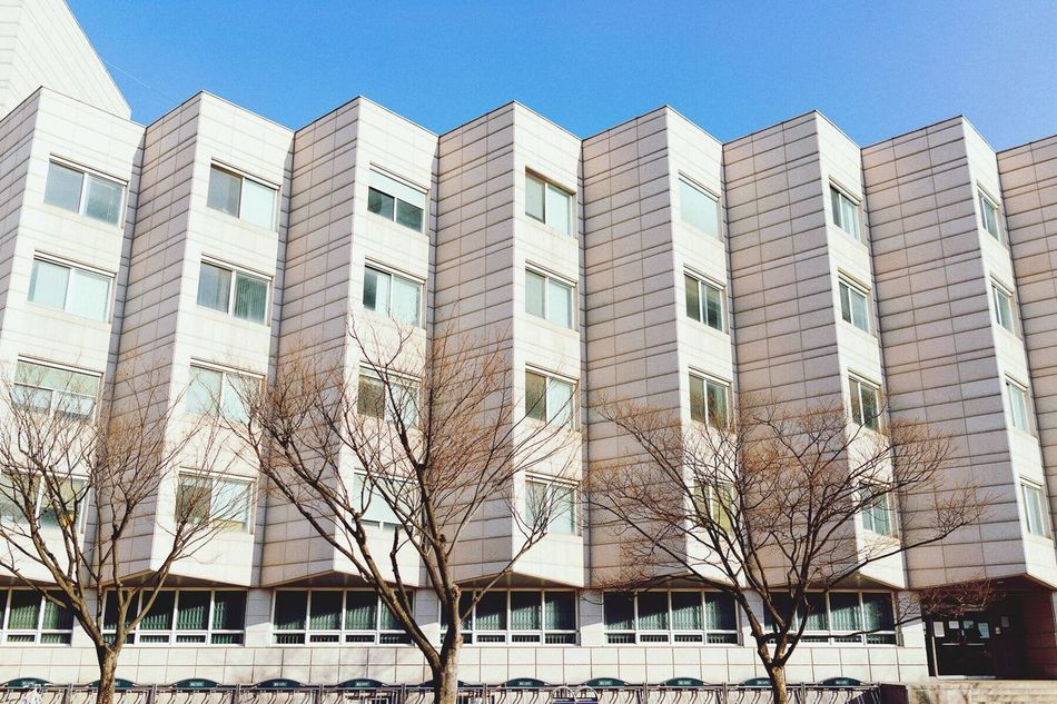 Beautiful stock photos of seoul, Architecture, Bare Tree, Blue, Building Exterior