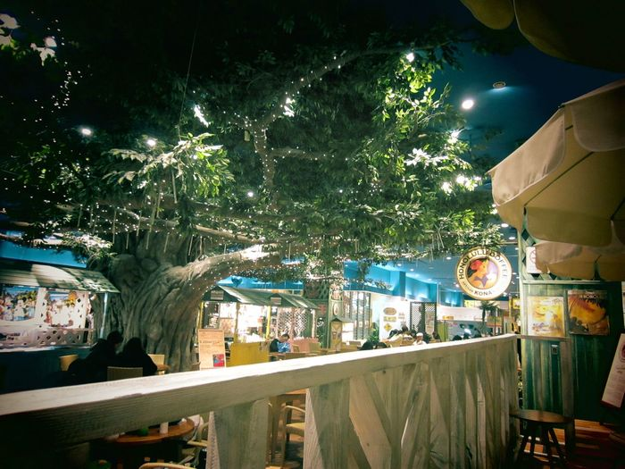 My kind of secret garden to visit daily.:) Drinking A Latte Cafe Relaxing Favorite Places Mypointofview