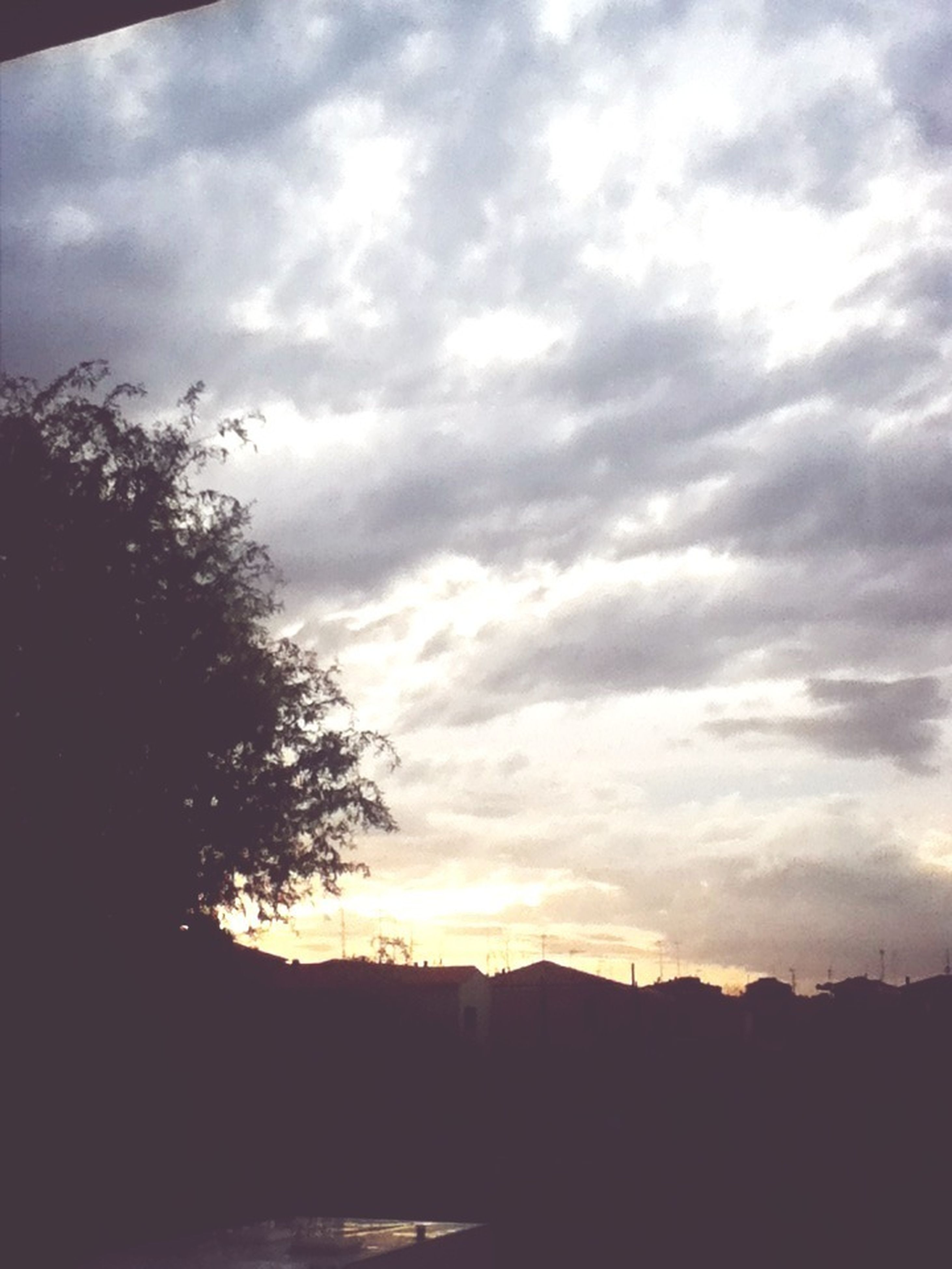 silhouette, sky, sunset, cloud - sky, tree, cloudy, tranquility, scenics, tranquil scene, beauty in nature, cloud, nature, dark, landscape, dusk, outline, outdoors, idyllic, low angle view, overcast