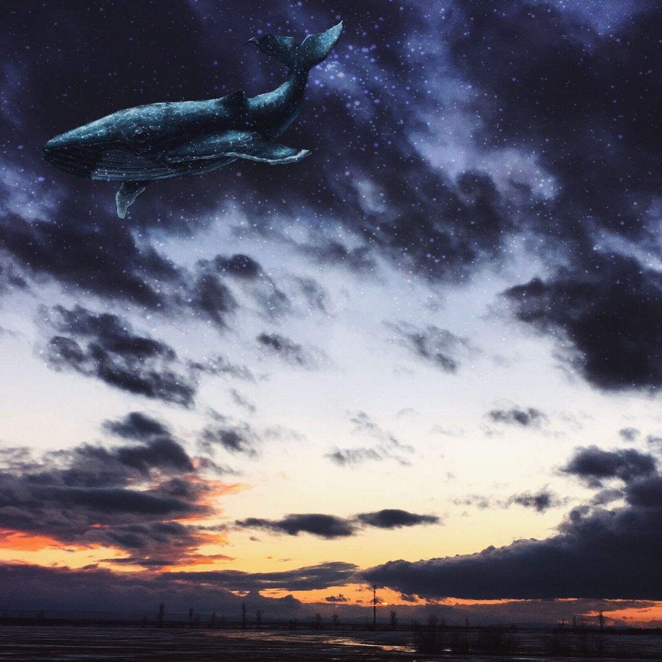 InstaDimka Imagination Sunset Stars & Dreams Whale