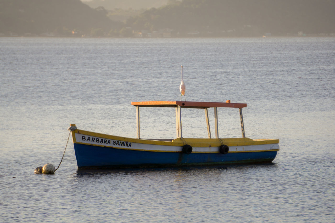 Bird On Boat Boat Colorful Enjoying Life Hanging Out Ocean Paquetá Island Rio De Janeiro Simplicity Tranquility
