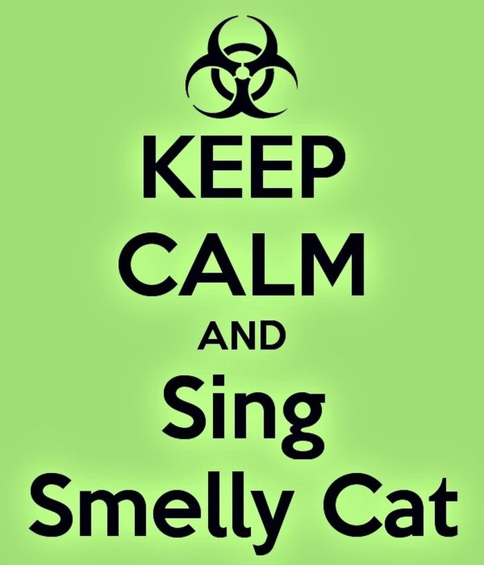 Smellycat Smelly Cat Whataretheyfeedingyou