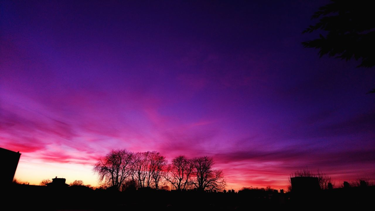 Purple Sky Sunset Tree Silhouette Dramatic Sky No People Outdoors Tranquility Taken From Smartphone Camera Filters & Effects From My Doorstep Norwich Sony Xperia Silhouette Photography Glow