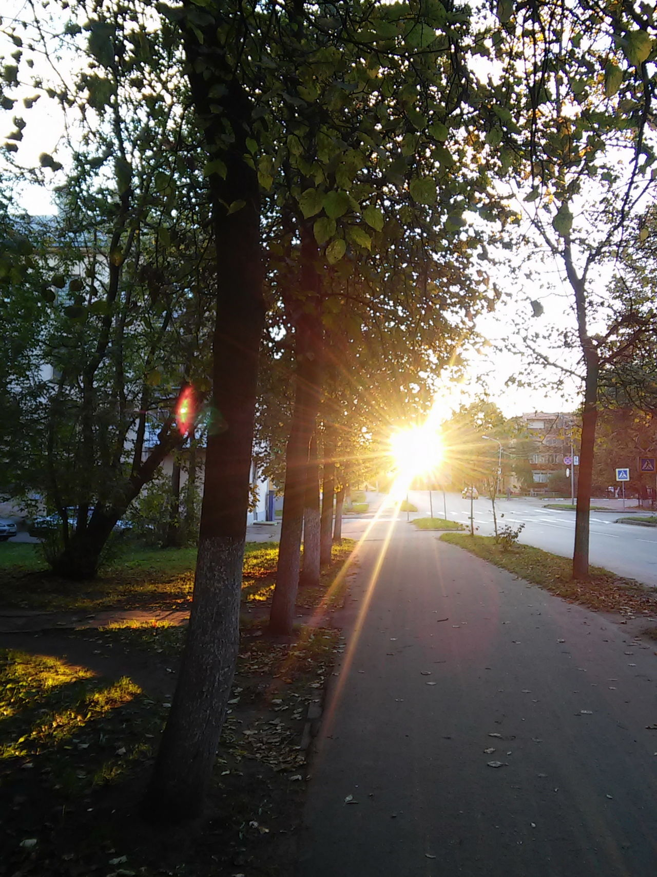Autumn Cityview Day Lens Flare No People Outdoors Russia Sky Sun Sunlight Sunset Tranquility Tree Velikiy Novgorod