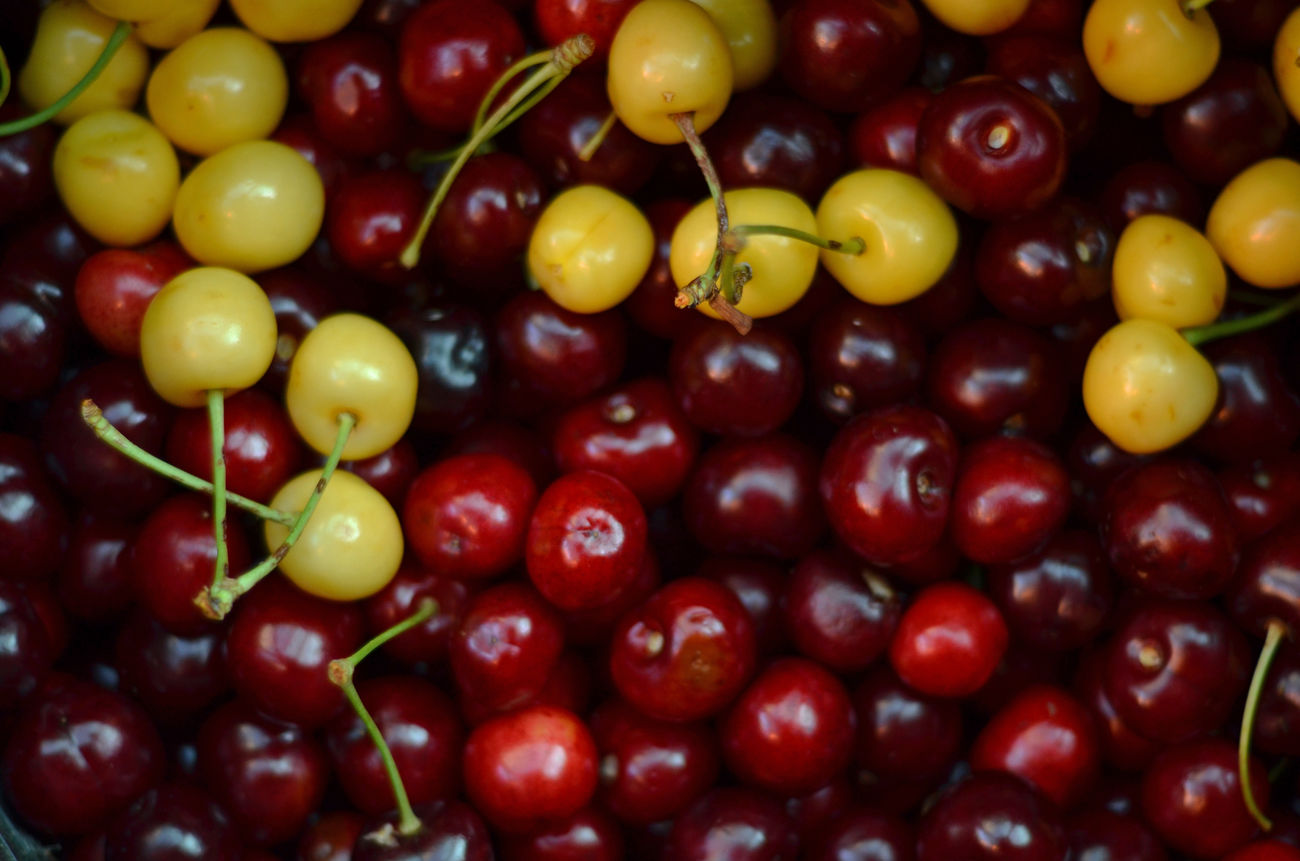 Sea of cherries Cherry Colors EyeEm Best Shots EyeEm Gallery Food Fruit Macro Nature Photo Photography Red Sea Taking Photos
