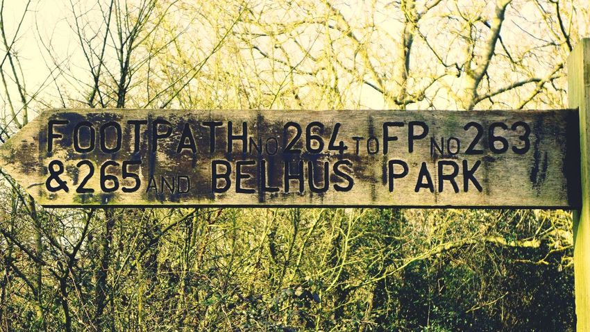 Belhus Walking The Dog PostcodeRM15