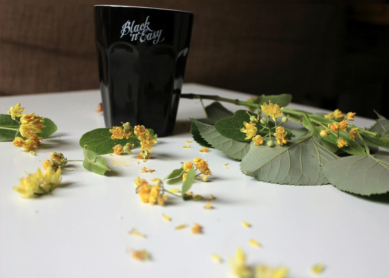 Coffee Time Time Relax Black&easy Linden Tree Yellow Flower