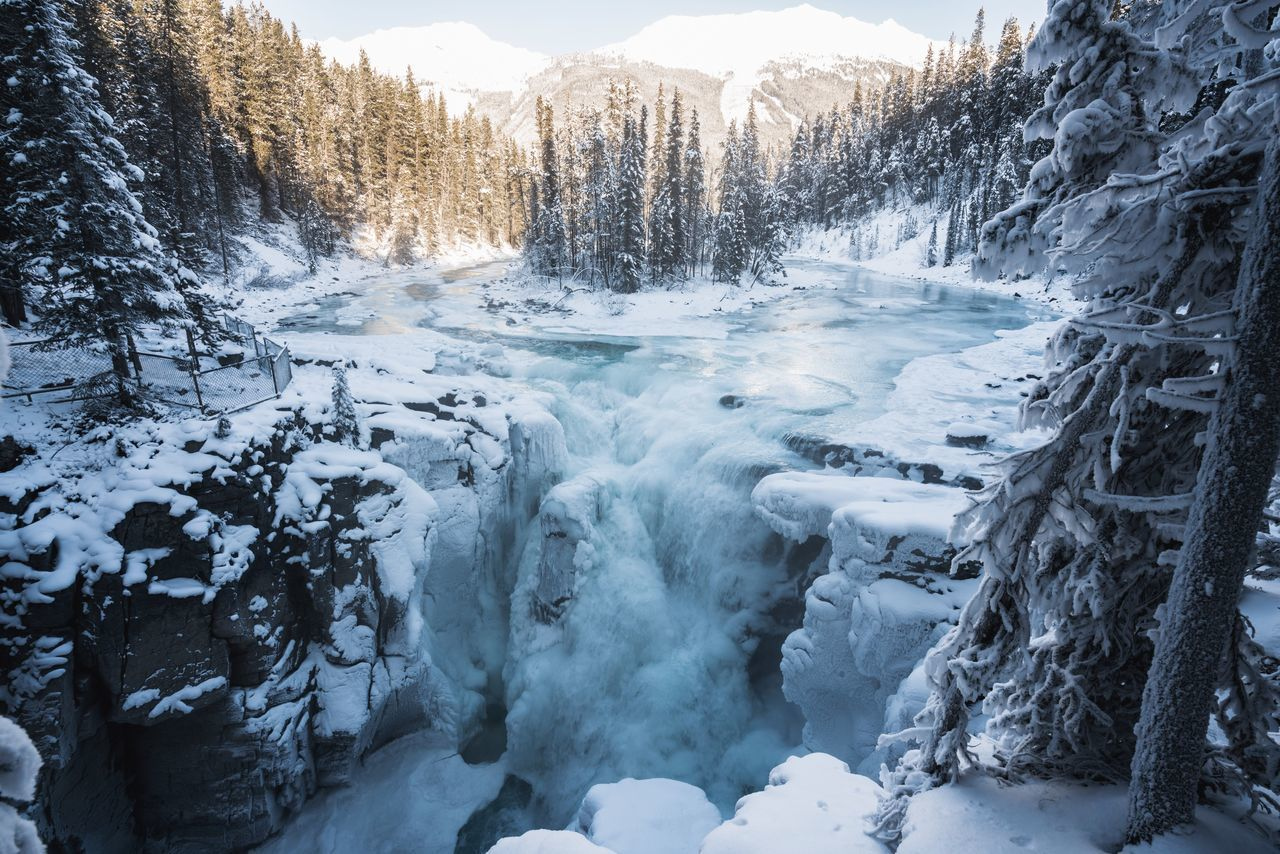 Scenic View Of A Frozen Waterfall In Forest